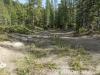 quirk-beaver-40189