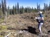 elbow-logging-summer2012-_0410