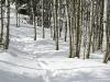Baldy-snowshoe-4