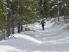 mclean-hill-snowshoe-1