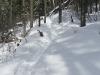 mclean-hill-snowshoe-2