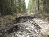 Moose Creek-10671.jpg
