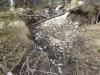 Moose Creek-10676.jpg