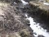 Moose Creek-10682.jpg