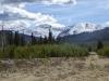 Moose Creek-10687.jpg