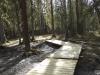 Moose Creek-10696.jpg