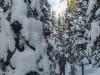 rea-glacier-snowshoe-2