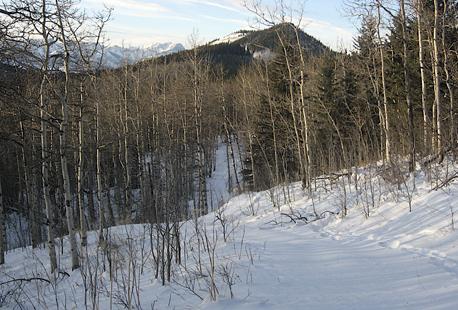 Eagle Hill Trail