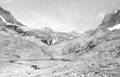 Haig Glacier 1982