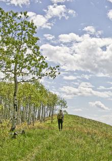 Long Prairie Hills