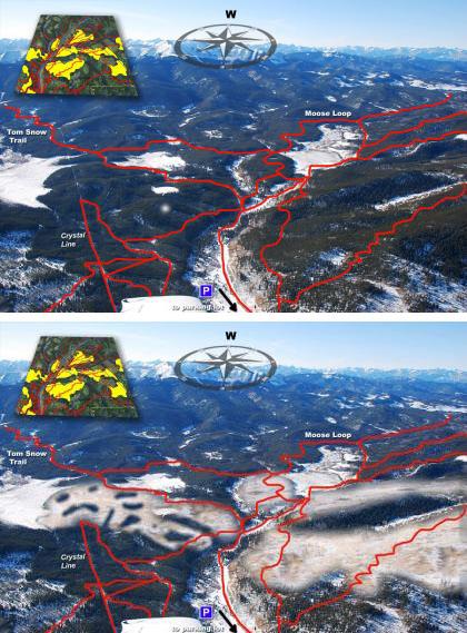 Logging comparison-photo