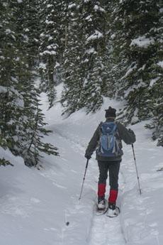 Mt Murray Viewpoint trail