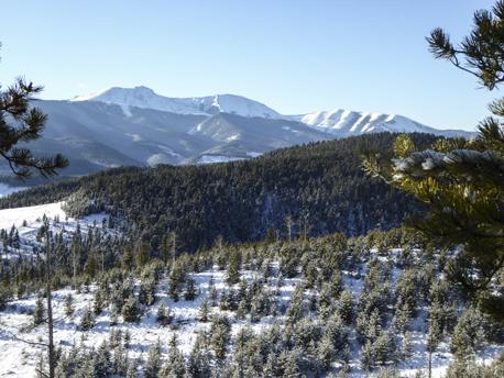 View Moose Mtn
