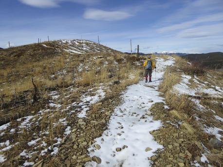 Trail through the cutblocks.