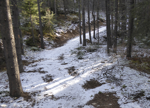 Bolton ski trail