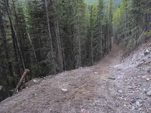 The snaking downhill on the ski/bike trail.