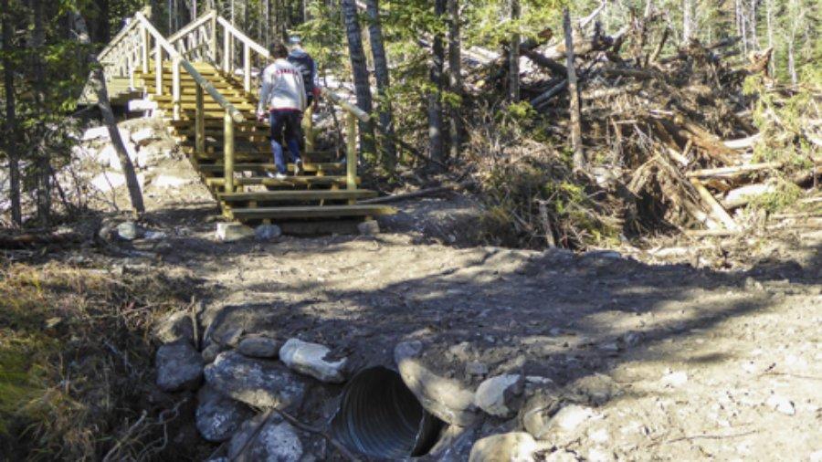 Ribbon Creek Update