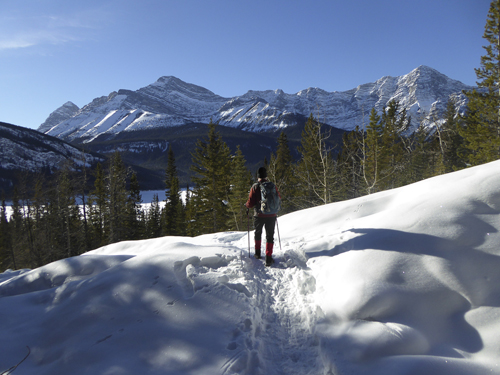 View to the north west over Spray Lakes Reservoir.