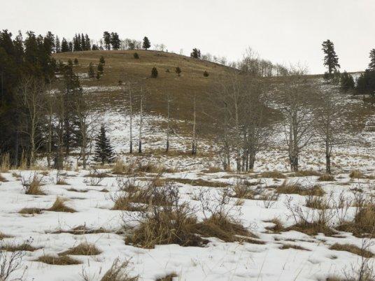 Wolf Creek-30281