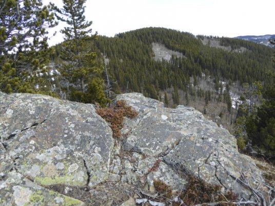 Mount MvNabb-30365