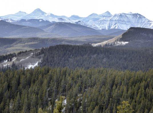 Mount MvNabb-30366