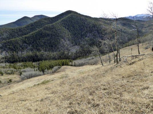 Coal Creek Ridge-30486