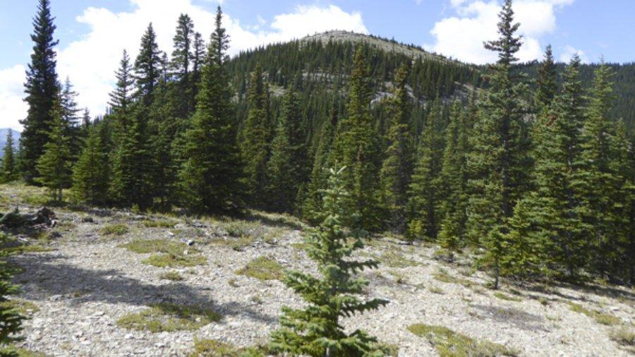 Changes to Rainy Summit Ridge