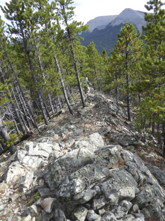 Rainy Summit Ridge-ridge