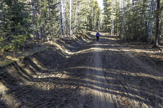 Elbow trail has been improved by ditching and material added to the tread.