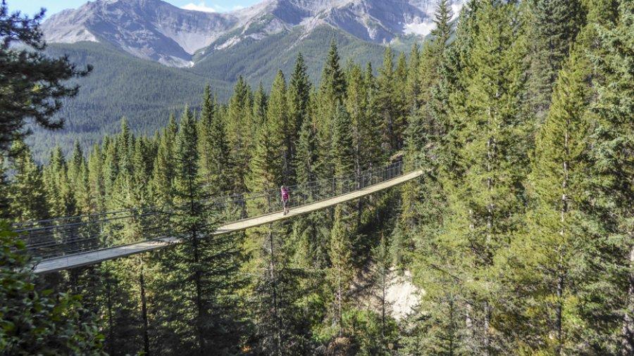 The High Rockies Trail
