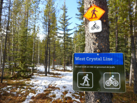 A winter multi-user trail was built alongside West Crystal Line for walkers and fat tire bikers to keep them off the ski trail.