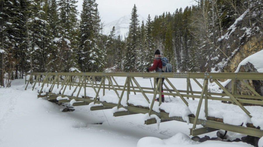 Snowshoe Ribbon Creek