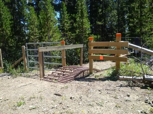 Ride over cattle guard