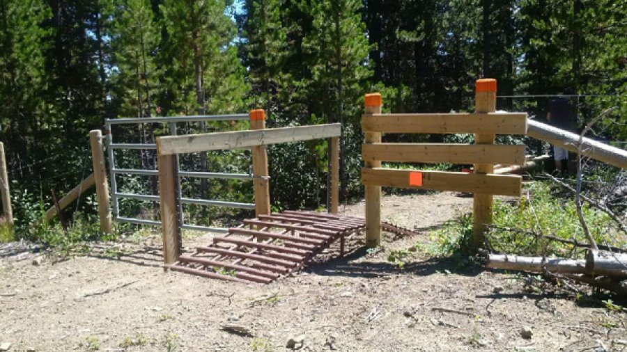 Ride-over cattle guard