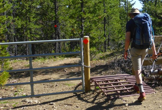 Cattle guard with hiker