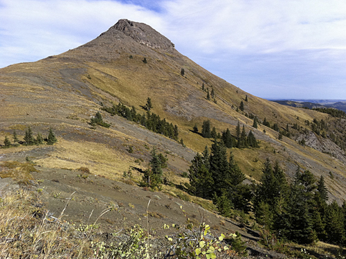 Mount Ware