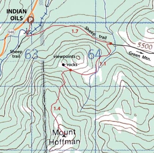 Hoffmann map