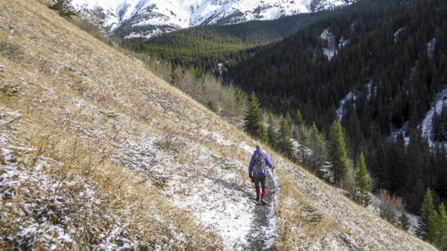 Kananaskis Trails Update – Mainly Good News