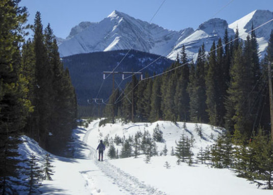 Snowshoe the new Torpor Loop in Peter Lougheed Provincial Park Thumbnail