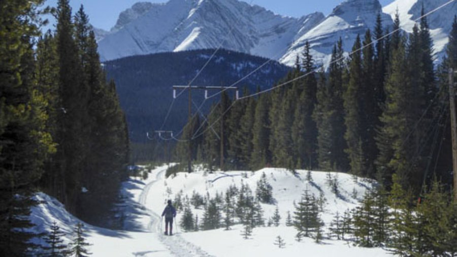 Snowshoe the new Torpor Loop in Peter Lougheed Provincial Park