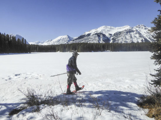 Snowshoe Frozen Toad and other new trails in Peter Lougheed Park Thumbnail