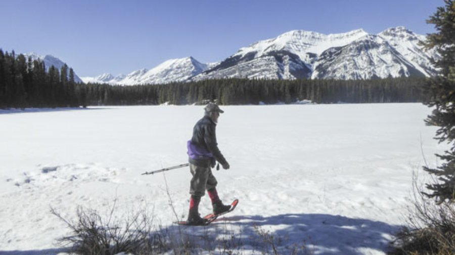Snowshoe Frozen Toad and other new trails in Peter Lougheed Park