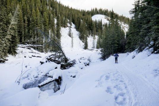 New Ribbon Creek Snowshoe Loop Thumbnail